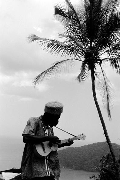 Island「Trinidad And Tobago」:写真・画像(17)[壁紙.com]