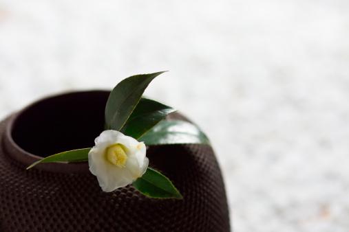 Wabi Sabi「Camellia on tea pot, close-up」:スマホ壁紙(17)