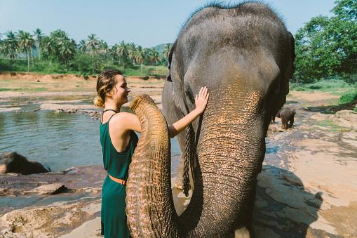 Sri Lanka「Elephants bathing in Pinnavella」:スマホ壁紙(7)