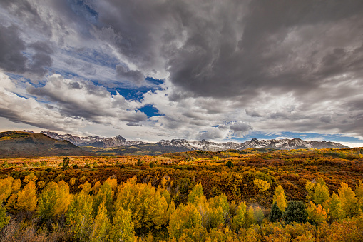 Uncompahgre National Forest「Aspen trees and Sneffels Range in autumn, Mount Sneffels Wilderness, Uncompahgre National Forest, Colorado, USA」:スマホ壁紙(0)