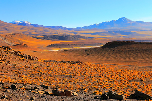Bolivian Andes「Chilean Andes altiplano at sunrise and volcano, Idyllic Atacama Desert, snowcapped Volcanic steppe puna landscape panorama – Antofagasta region, Chilean Andes, Chile, Bolívia and Argentina border」:スマホ壁紙(2)