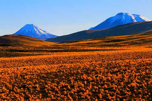 Bolivian Andes「Chilean Andes altiplano at sunrise and volcano, Idyllic Atacama Desert, snowcapped Volcanic steppe puna landscape panorama – Antofagasta region, Chilean Andes, Chile, Bolívia and Argentina border」:スマホ壁紙(16)