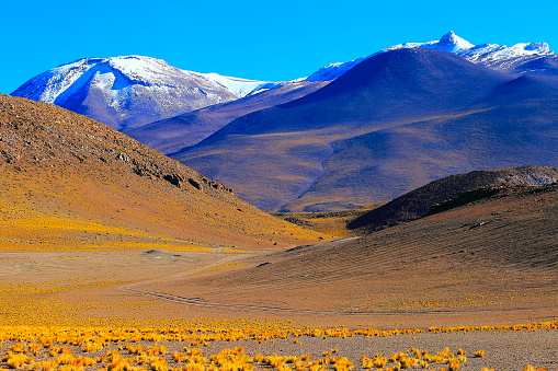 Bolivian Andes「Chilean Andes altiplano at sunrise and volcano, Idyllic Atacama Desert, snowcapped Volcanic steppe puna landscape panorama – Antofagasta region, Chilean Andes, Chile, Bolívia and Argentina border」:スマホ壁紙(18)