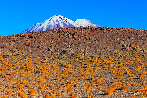 Puna「Chilean Andes altiplano at sunrise and volcano, Idyllic Atacama Desert, snowcapped Volcanic steppe puna landscape panorama – Antofagasta region, Chilean Andes, Chile, Bolívia and Argentina border」:スマホ壁紙(14)