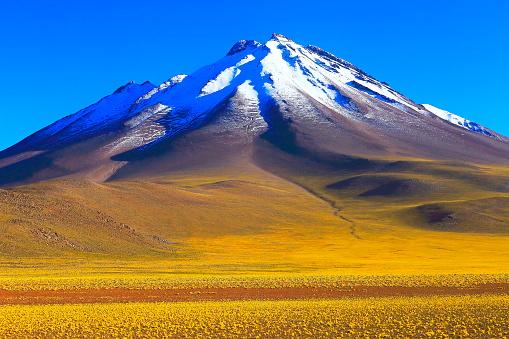 Snow scene「日の出と火山、牧歌的なアタカマ砂漠、雪を頂いた火山性草原プナ風景パノラマ-アントファガスタ、チリのアンデス山脈の地域のチリ、Bolívia とアルゼンチンの国境でチリのアンデス山脈のアルティプラーノ」:スマホ壁紙(2)