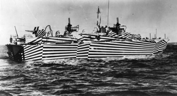 Individuality「Zebra Camouflage」:写真・画像(12)[壁紙.com]