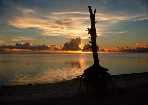 Northern Mariana Islands「Sea」:スマホ壁紙(13)