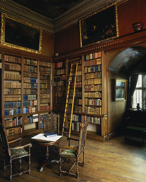 Model Home「Library Ladder」:写真・画像(16)[壁紙.com]