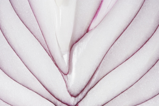 Cross Section「Sliced red onion, close-up」:スマホ壁紙(17)