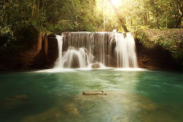 YS Falls in Jamaica:スマホ壁紙(壁紙.com)