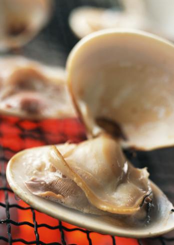 はまぐり料理「Broiled clams」:スマホ壁紙(11)