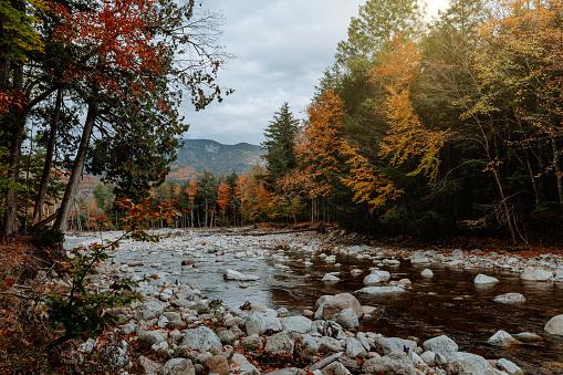 Adirondack Mountains「Hiking in the Adirondack Mountain in the fall」:スマホ壁紙(10)