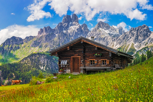 Chalet「Alpine scenery with mountain chalet in summer」:スマホ壁紙(0)