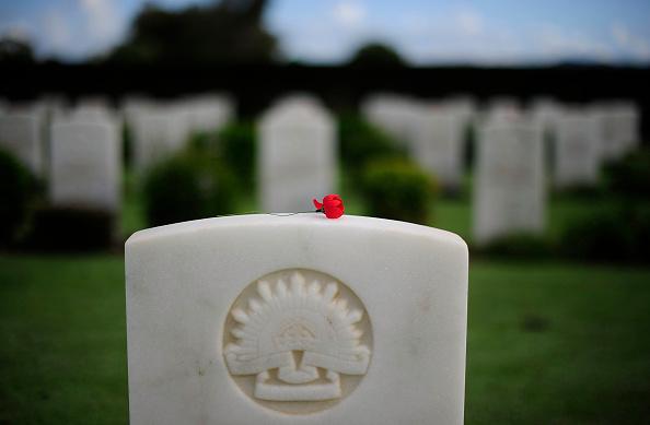 Poppy - Plant「Australians Commemorate ANZAC Day」:写真・画像(13)[壁紙.com]