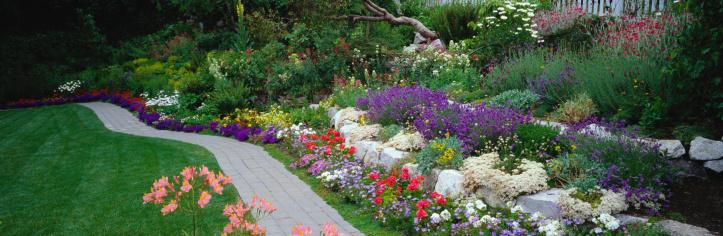 観賞用庭園「Path Through a Garden」:スマホ壁紙(6)