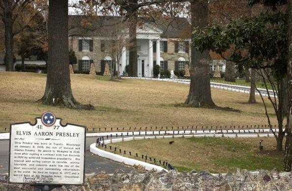 Grounds「Elvis Presley Enterprises To Be Sold」:写真・画像(17)[壁紙.com]
