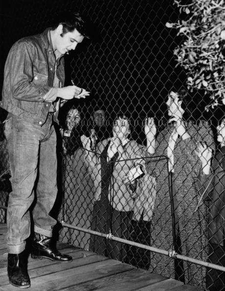 Denim「Elvis Autographs」:写真・画像(6)[壁紙.com]