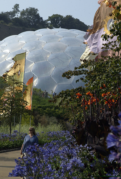 Architectural Feature「The Eden Project」:写真・画像(17)[壁紙.com]