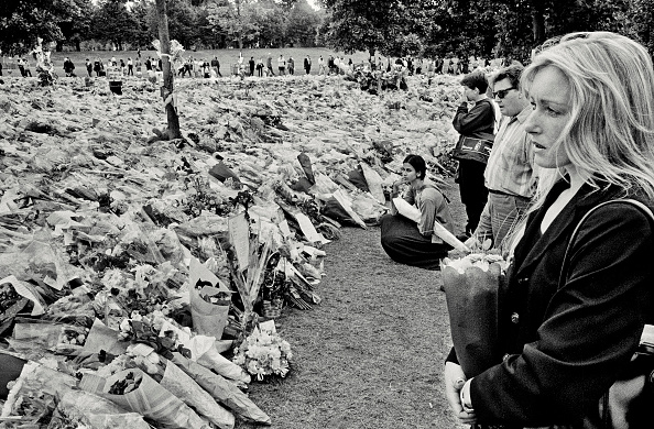 flower「Funeral of Diana, Princess of Wales」:写真・画像(8)[壁紙.com]