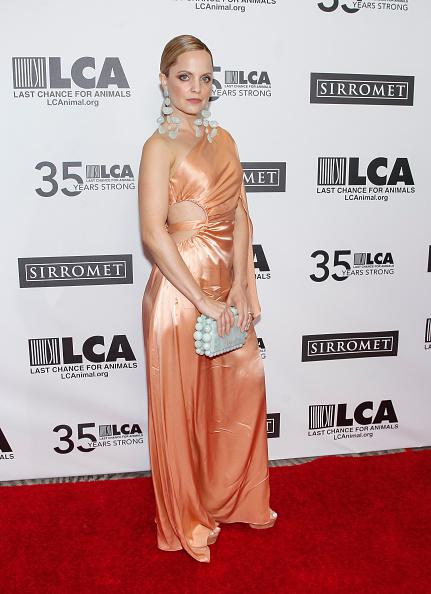 Satin Dress「Last Chance For Animals' 35th Anniversary Gala」:写真・画像(6)[壁紙.com]