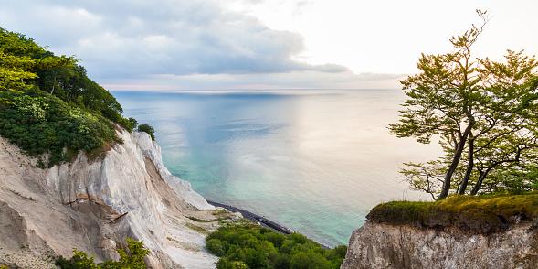 Island「Denmark, Mon Island, Mons Klint, Chalk cliffs」:スマホ壁紙(14)