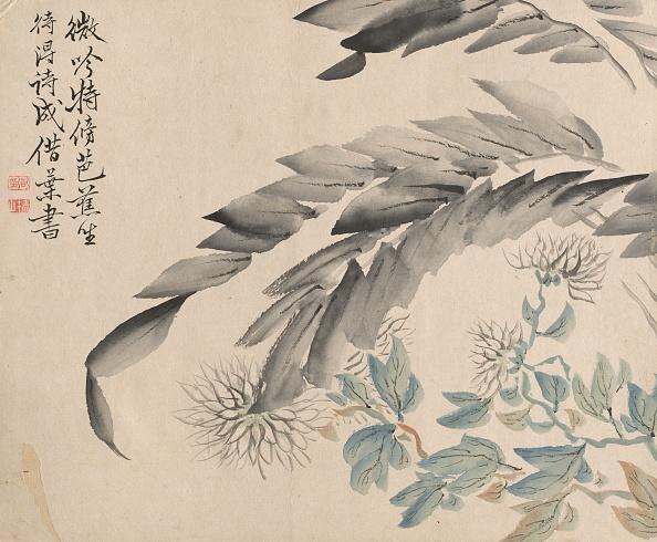 Chrysanthemum「Chrysanthemums And Leaves Of A Mulberry Tree. Creator: Tsubaki Chinzan (Japanese」:写真・画像(19)[壁紙.com]
