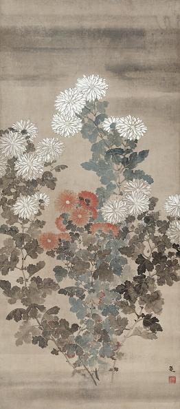 Chrysanthemum「Chrysanthemums」:写真・画像(14)[壁紙.com]