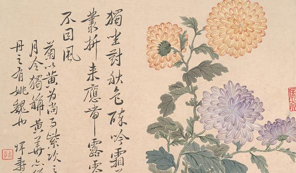 Chrysanthemum「Chrysanthemums. Creator: Unknown.」:写真・画像(7)[壁紙.com]