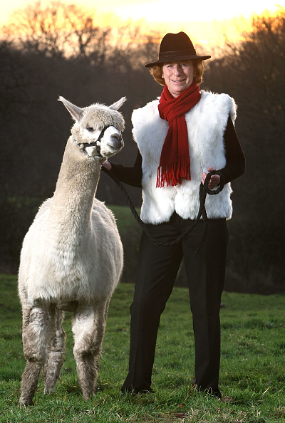 Knutsford「Alpaca Farmer Produces Christmas Gifts」:写真・画像(7)[壁紙.com]