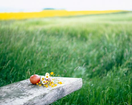 花畑「Wildflowers and apple on picnic bench in field」:スマホ壁紙(19)