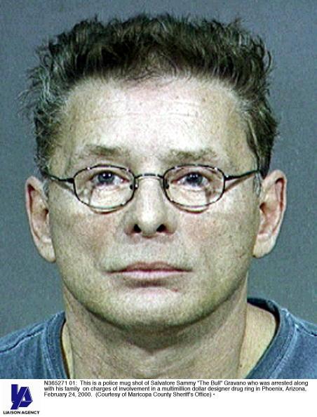 Arizona「Salvatore Sammy The Bull Gravano Who Was Arrested」:写真・画像(12)[壁紙.com]