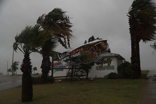 Corpus Christi - Texas「Texas Gulf Coast Braces For Hurricane Harvey」:写真・画像(15)[壁紙.com]