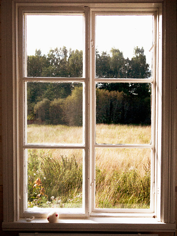 Window Frame「View of Field and Trees Through Window」:スマホ壁紙(1)