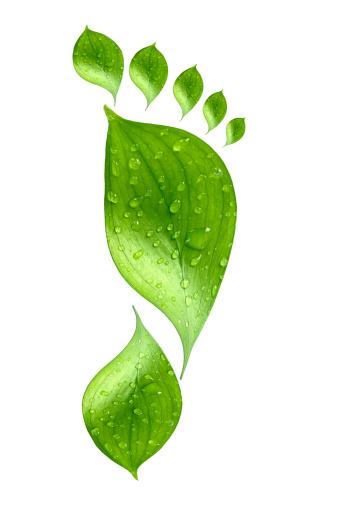 Droplet「水ドロップ緑のフットプリント」:スマホ壁紙(15)