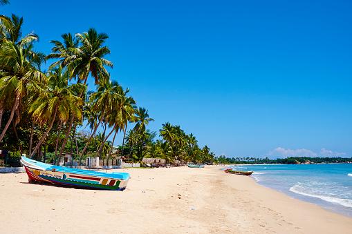 Sri Lanka「Sri Lanka, Trincomalee, Uppuveli beach」:スマホ壁紙(14)