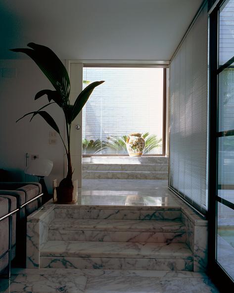 葉・植物「View of marble steps in a house」:写真・画像(11)[壁紙.com]