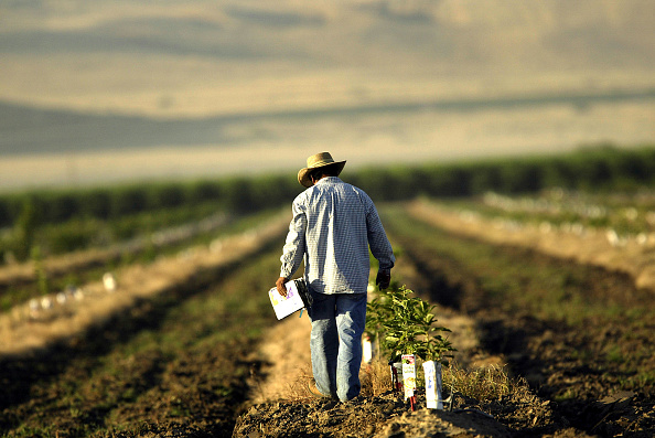 Farm「Bread and Oil: California's Central Valley」:写真・画像(2)[壁紙.com]