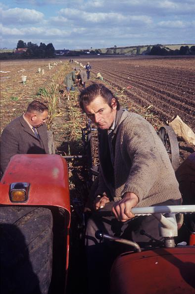 Plowed Field「Somerset Farmers」:写真・画像(18)[壁紙.com]