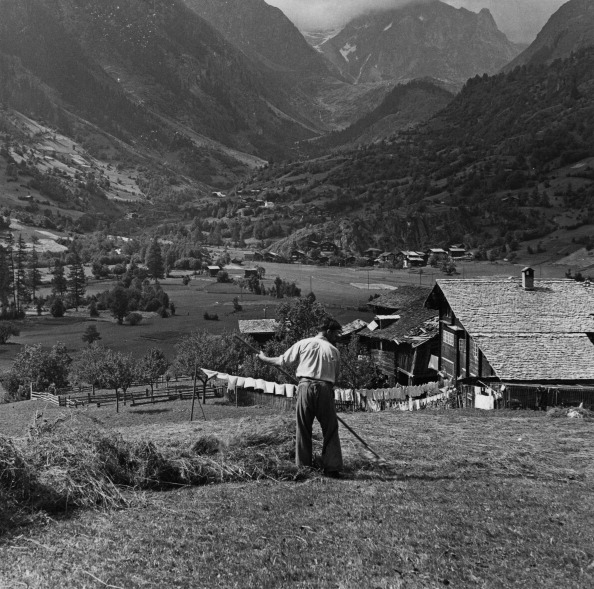 Switzerland「Hay Harvesting In Switzerland」:写真・画像(17)[壁紙.com]