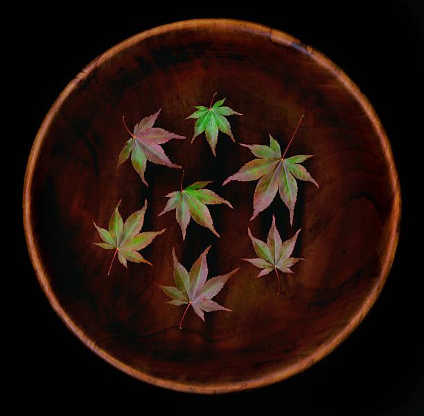 Japanese maple (Acer palmatum) leaves in bowl:スマホ壁紙(壁紙.com)