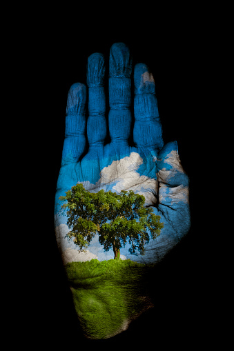 Palm of Hand「Hand with Nature Scene Painted On It, Black Background」:スマホ壁紙(11)