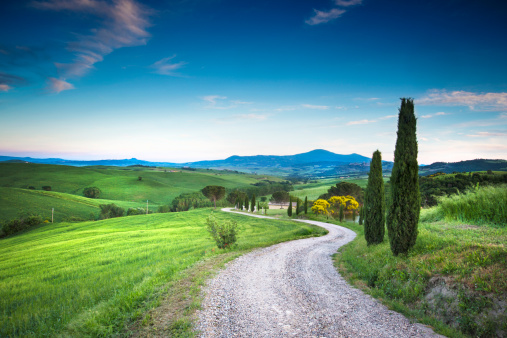 Footpath「Road to the beauty Tuscany」:スマホ壁紙(4)