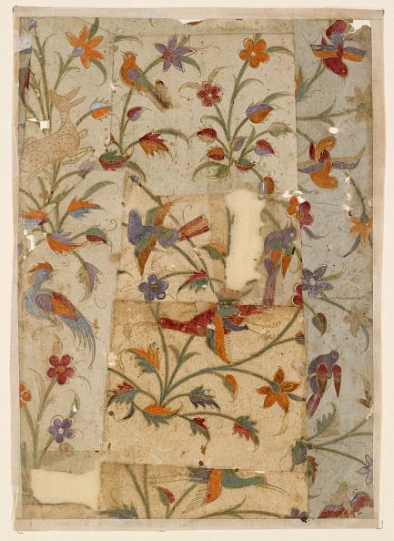 Full Frame「Birds And Flowers」:写真・画像(11)[壁紙.com]