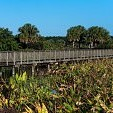 Green Cay壁紙の画像(壁紙.com)