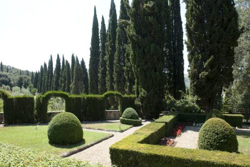 Ornamental Garden「Vignamaggio, the garden」:スマホ壁紙(17)