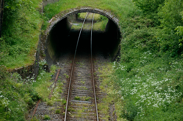 Grass「Tunnels at Tipperary on Wednesday 28th May 2003.」:写真・画像(13)[壁紙.com]