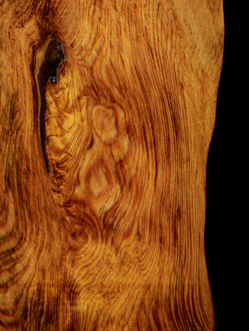 Tree Ring「Wood Texture」:スマホ壁紙(16)