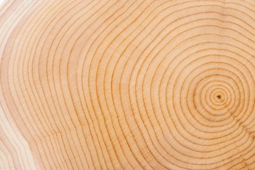 自然の模様「木の質感」:スマホ壁紙(19)