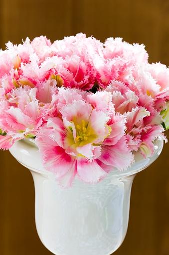 カーネーション「Pink carnations in a vase」:スマホ壁紙(12)
