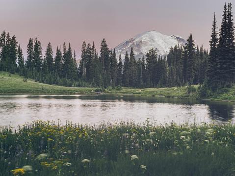レーニア山国立公園「Tipsoo MT.Rainier 湖」:スマホ壁紙(13)